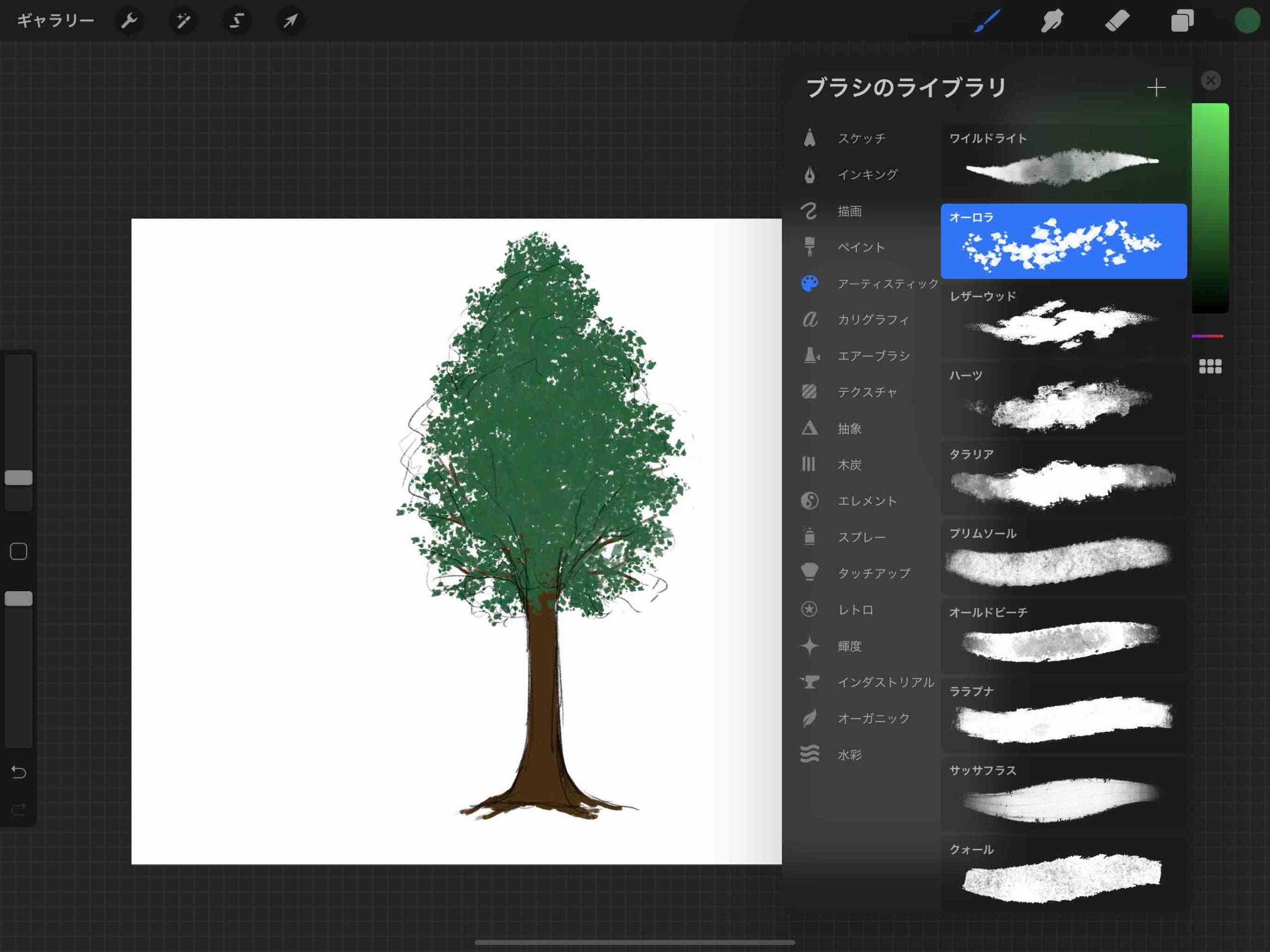 ③木の葉のシルエットを描く